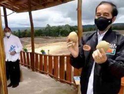 Jokowi Sebut Ada Tiga Komoditas di Food Estate Humbahas