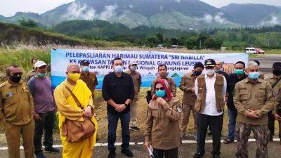 Tambang Emas Martabe Siapkan Helikopter Melepasliar Sri Nabilla