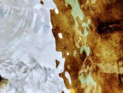 Warna Air Laut Sibolga Berubah Jadi Kecoklatan, Disebut Fenomena Red Tide
